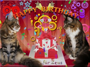 happy_birthday_zeus-kopie